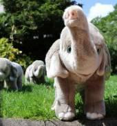 Förster Elefant stehend (7250)