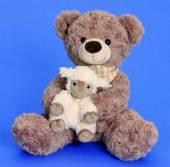 Teddybär Plüschbär mit Schäfchen 32 cm (4238-I)