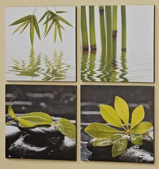 Bild NATURE 4er-Set Pflanzenmotive