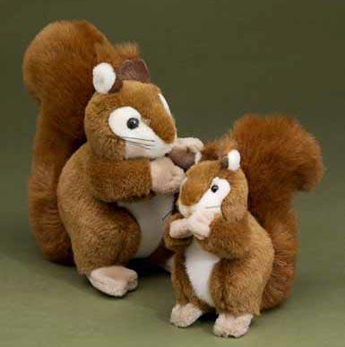 Förster Eichhörnchen groß (1175)