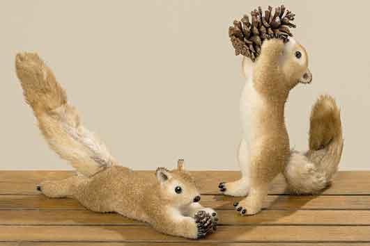 Eichhörnchen mit Zapfen 41 cm (752470)