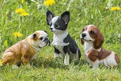 Hund Boxer Chihuahua Beagle Kunstharz (1002650)