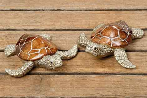 Schildkröte Bijan 2er-Set (261750) 11 cm