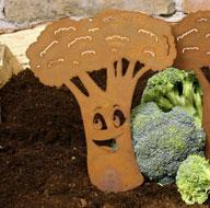Gartenstecker Beetstecker Rost Brokkoli